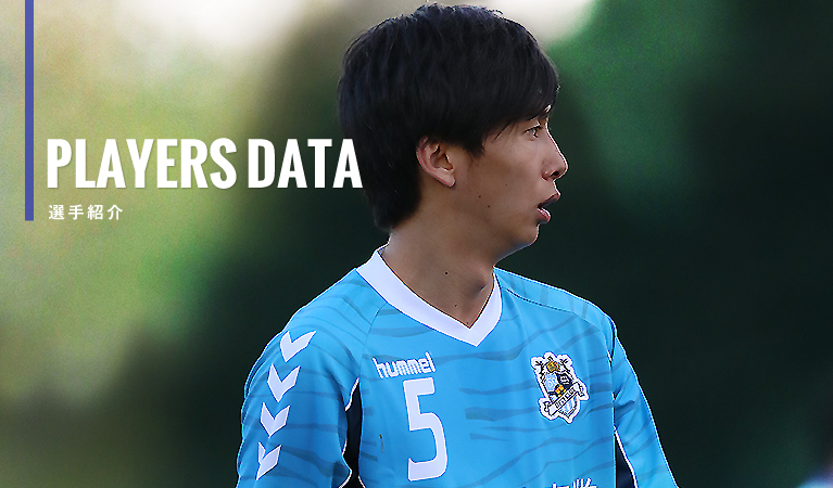 PLAYERS DATA